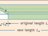 Modulus Of Elasticity Calculator; In Shear And Tension